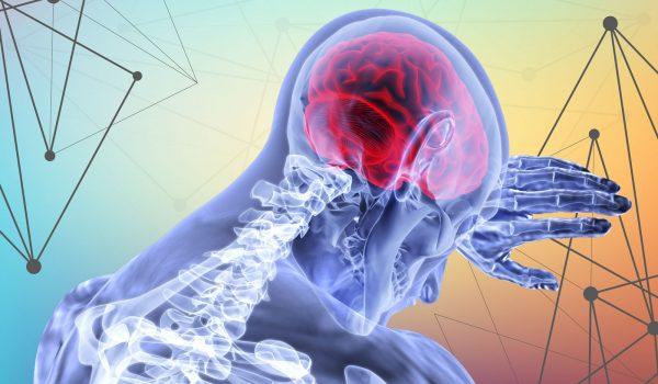 working-memory-centro-conoce-2